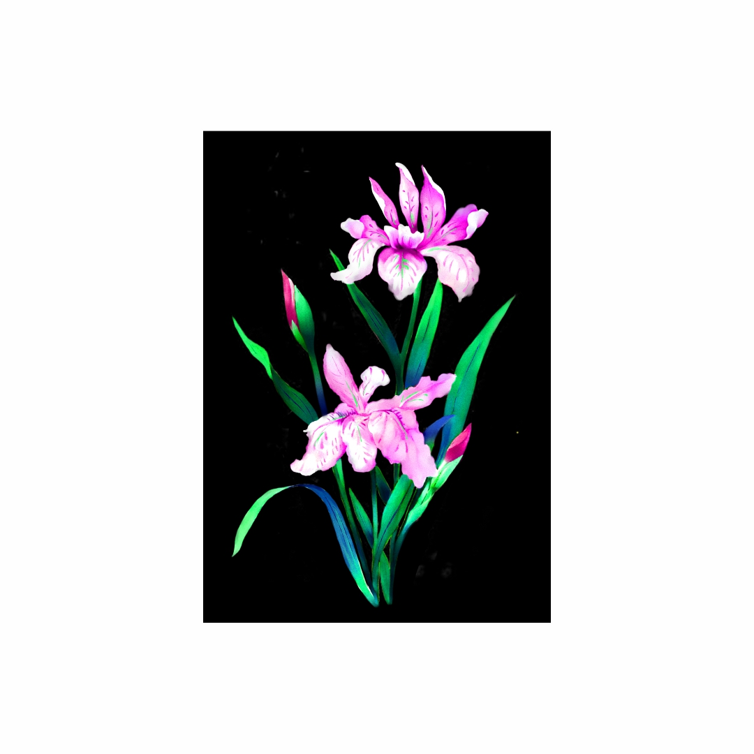 Colourful Cattleya orchids Plants Canvas Art abstract   Modern Canvas wall art Painting   30Cm X 45Cm