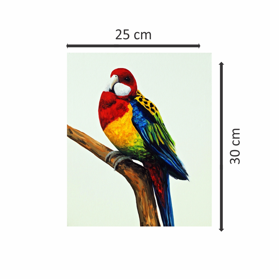 Canvas Macaw Bird Art abstract  Modern Canvas wall art Painting  25Cm X 30Cm