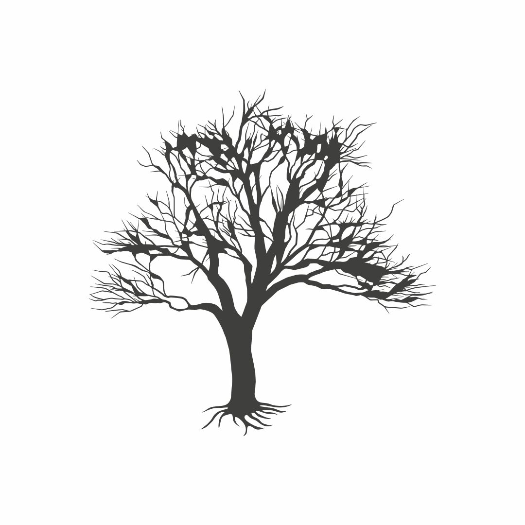 Tree Wall Sticker for Drawing Room size on wall 147cm X 147cm Multicolor