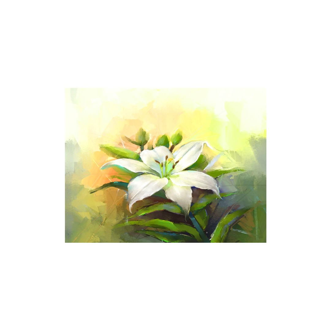 Canvas White lilly flower Art  Abstract  WallPainting  Wallart 58CmX43Cm