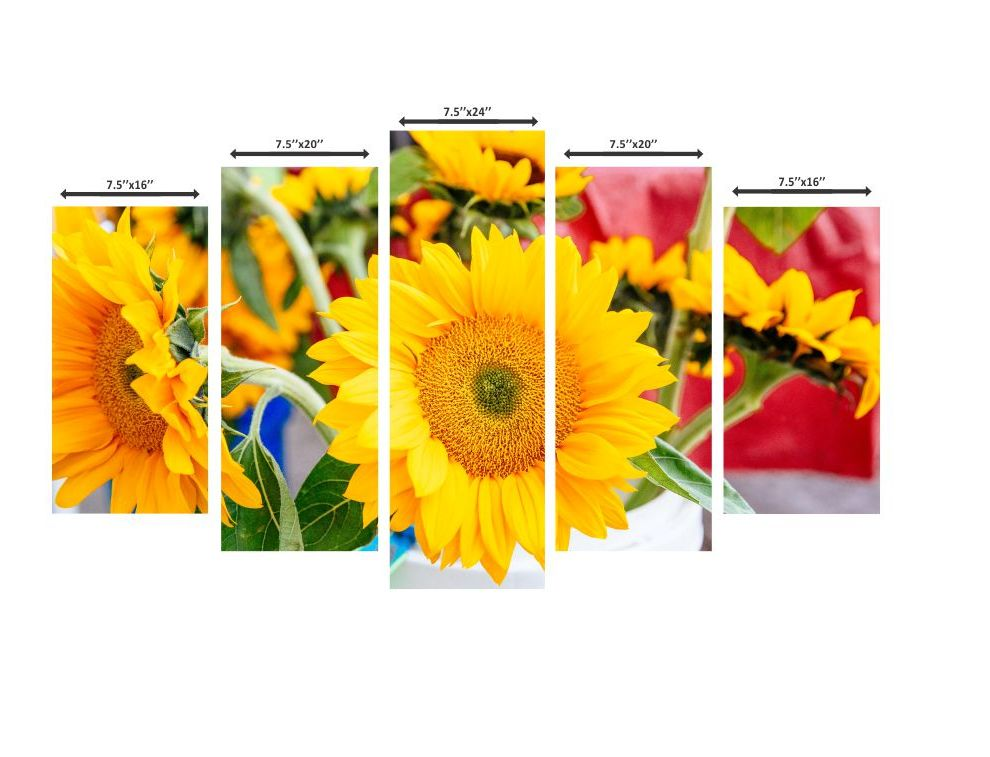 Yellow Common sunflower Beautiful Wall Painting 37.5 inchx24inch